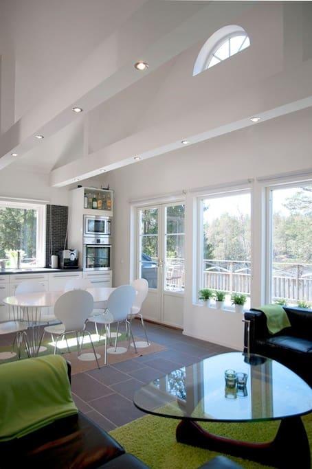 Modern kitchen/living room