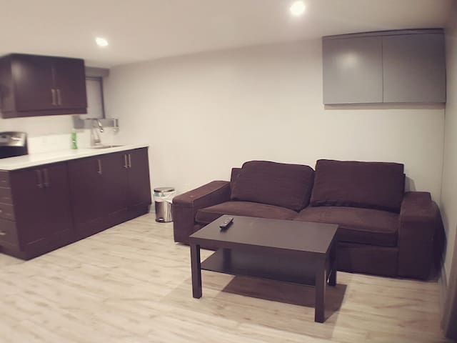 Cozy Basement Unit Downtown Toronto