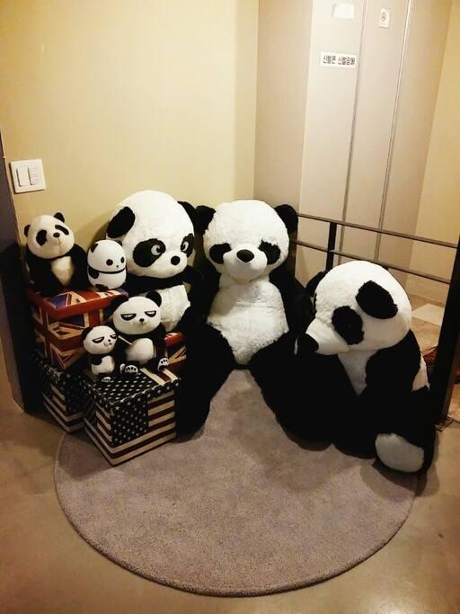 Panda photo zone