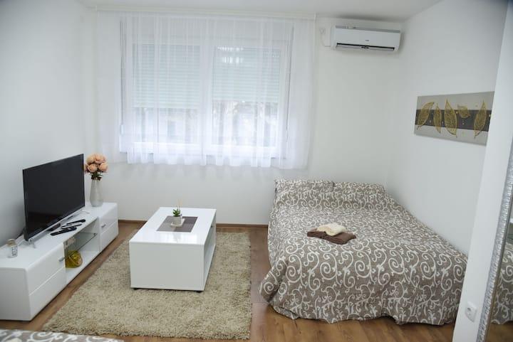Apartman Sofronic 4