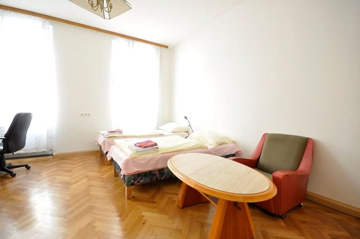 Apartment for 2-near Mariahilferstreet