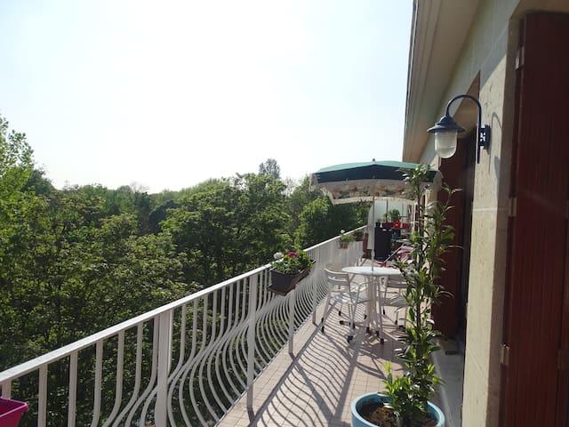 Appartement en bord de marne - Champigny-sur-Marne - Huoneisto