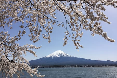 Room with Scenic Beauty of Mt.Fuji1 - Fujikawaguchiko-machi