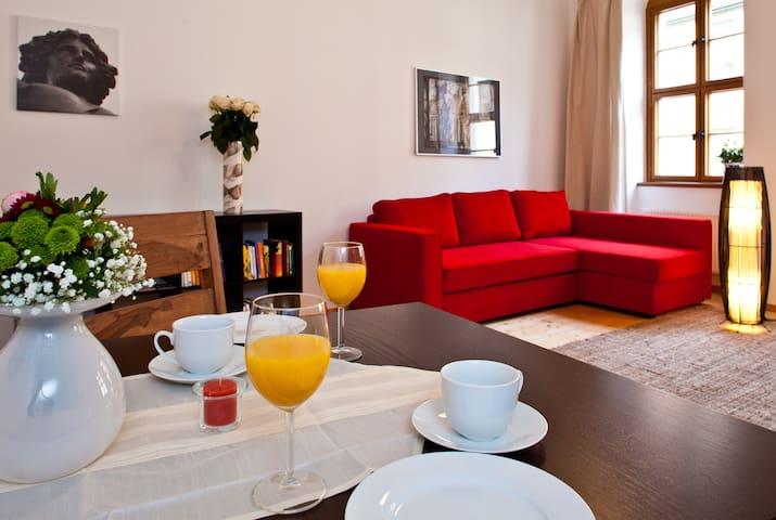 Komfortable FeWo, familienfreundlich und zentral - Dresden - Apartment