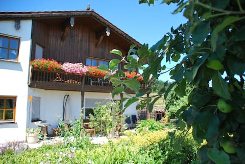 Holiday at the riding stables Gut Kirchhof