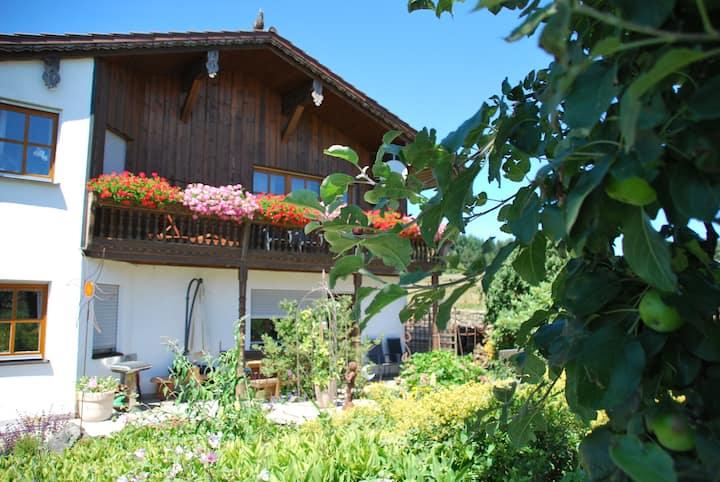 Urlaub auf der Reitanlage Gut Kirchhof