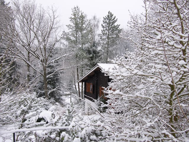 Mystique cabin in the woods in Taunus area! - Waldsolms - Casa