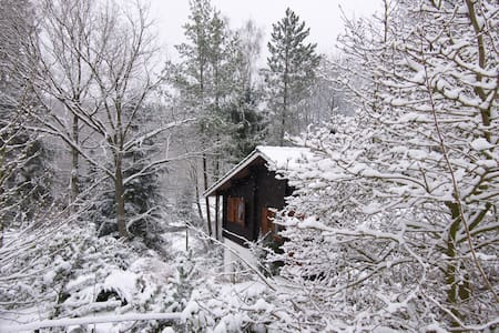 Mystique cabin in the woods in Taunus area! - Waldsolms - 独立屋