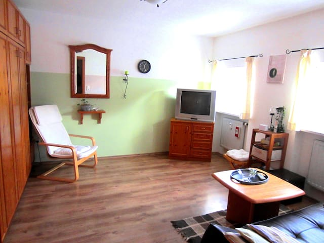 1-Zimmer-Appartement im Zentrum - Bad Birnbach - Appartement