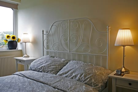 Lletroed Newydd  room with private bathroom