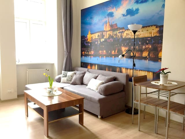Cozy studio 15 min CHARLES BRIDGE by walk - Praga - Apartament