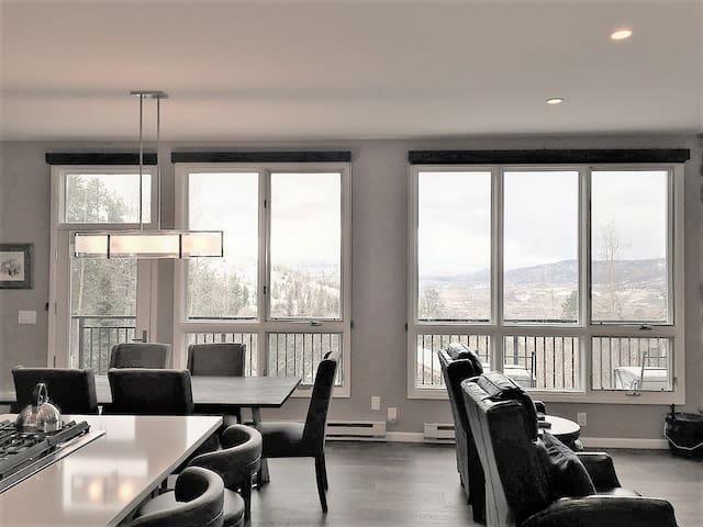 Mountain Penthouse Million $ Views - Scandinavian Lodge 300