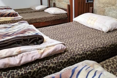 Tiger house dormitory guest house bcharre