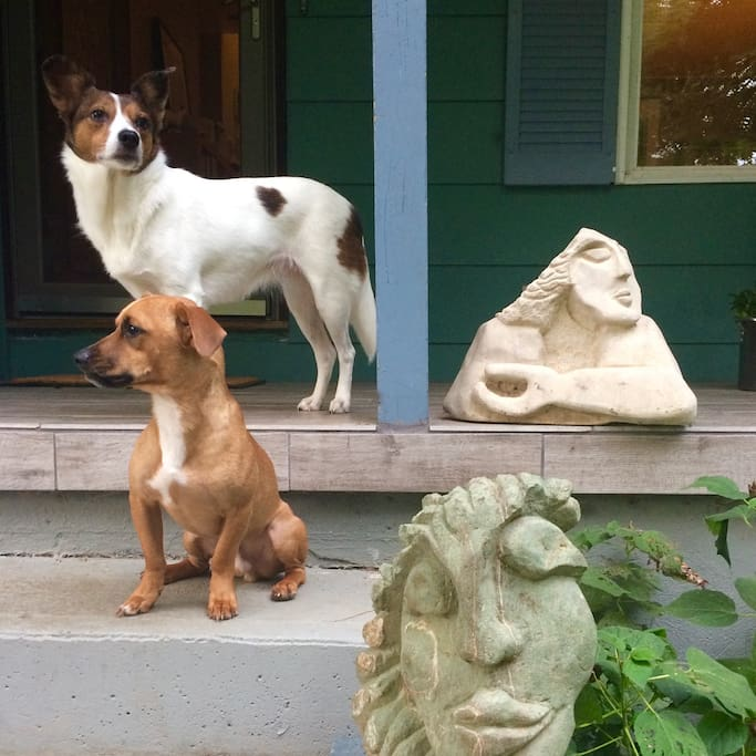 art and pups