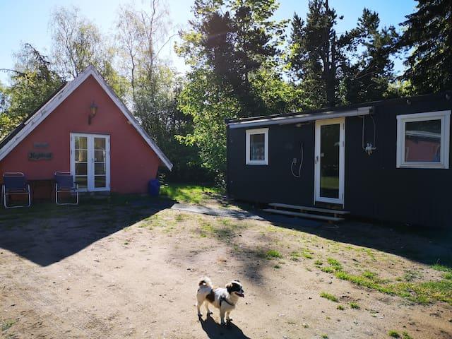 Lille sommerhus på Orø udlejes