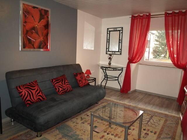 Studio Geranium coquet dans la vieille ville - Thann - Apartment