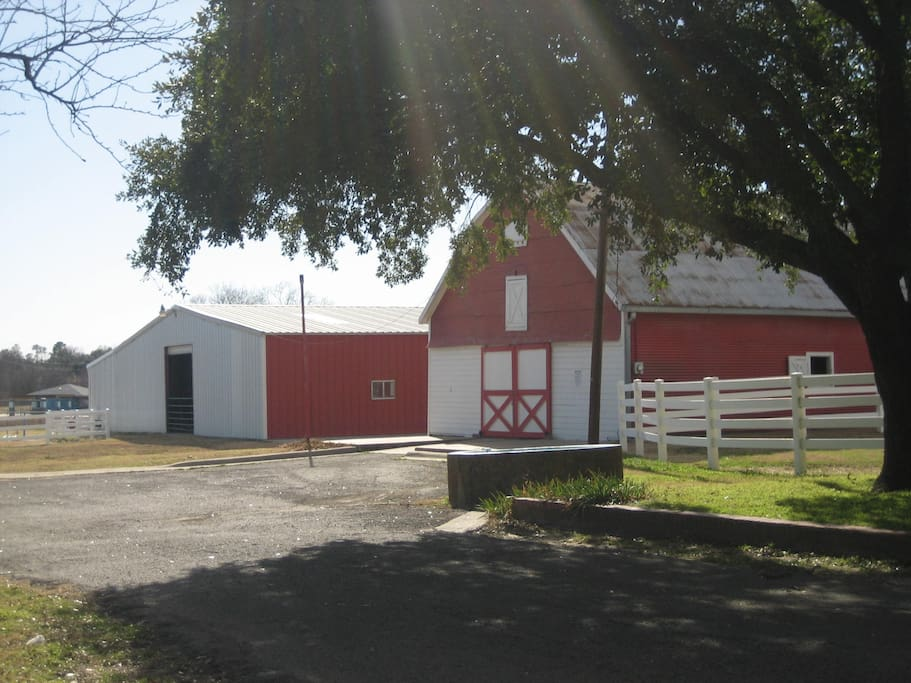 Barns for large animal stay if needed.  $25.00 per head.