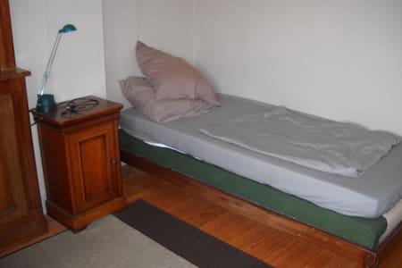 chambre dans belle villa - Blagnac
