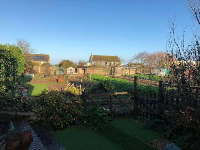 Back garden view over allotments