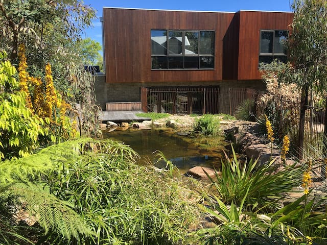 Native Oasis in City - Camberwell