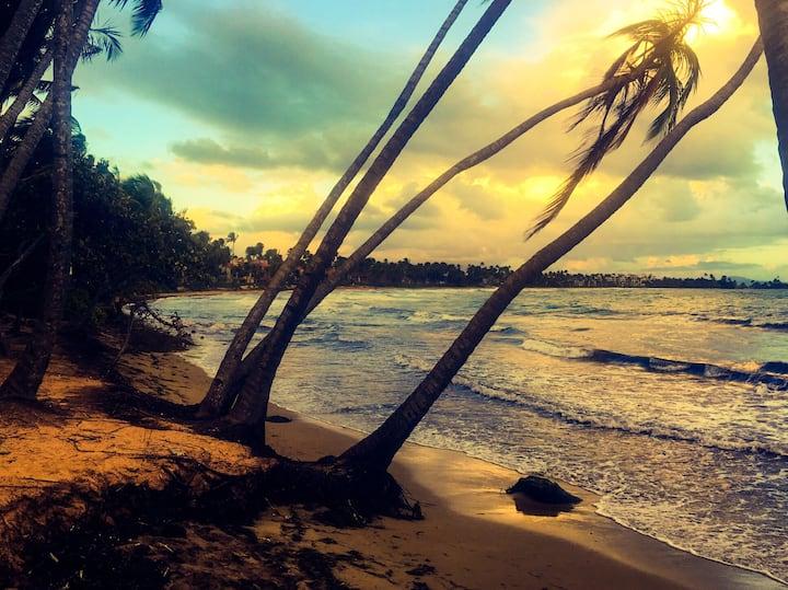 Respite Retreat - 15 minute walk to Palmas Beach.