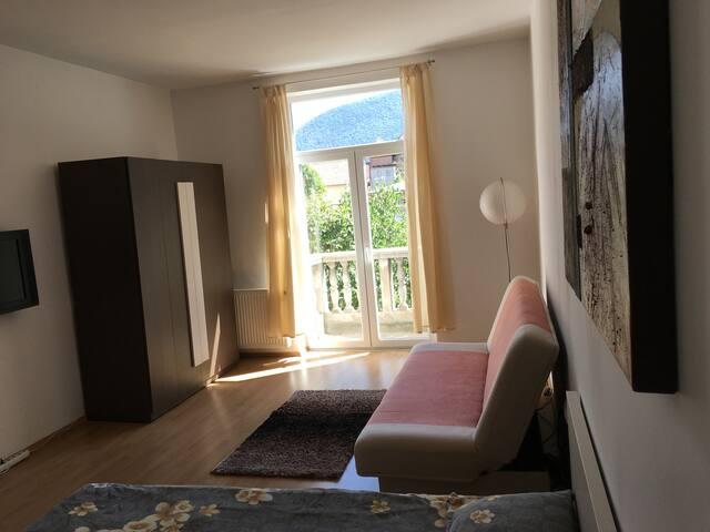Transylvania Apartment - Brașov - Byt