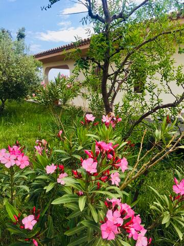 Casina Sara - locus amoenus in the countryside