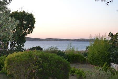 Villa Irene by the Sea - Paros - Rumah