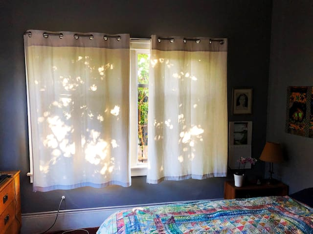 Drapes for privacy