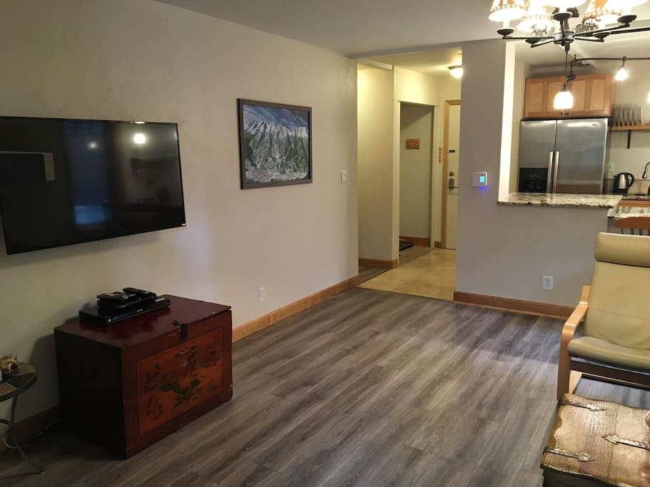 """New 50"""" HDTV with Netflix in main room"""