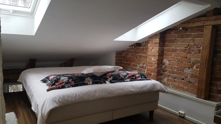 Loft41m2 in historical Turku, next to universities