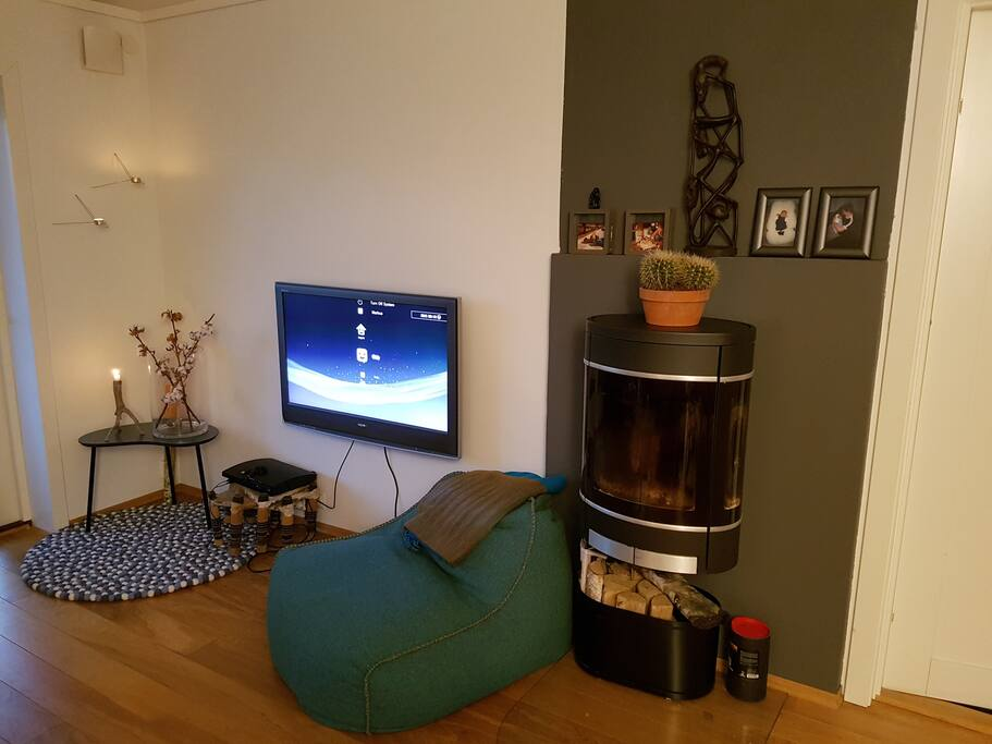 TV with Netflix etc.