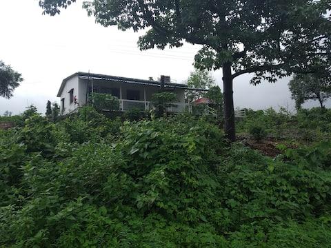 Vish Farms - A Seven Acre Paradise
