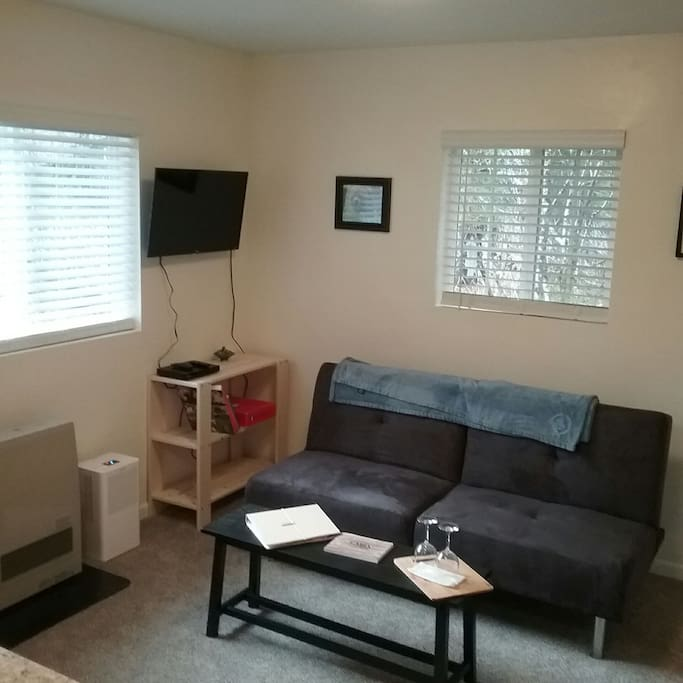 Living room with couch, recliner, wifi TV (ready for your Prime, Hulu or Sling log in) and a large closet