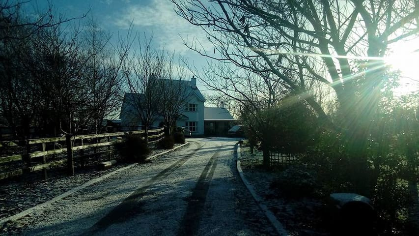 A double room in a large farmhouse. - Kilmalady, Horseleap - Bed & Breakfast