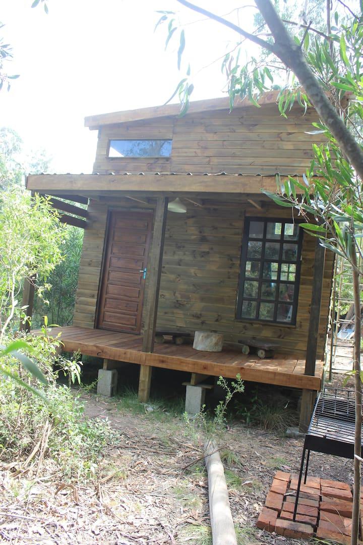 Loft Punta Negra