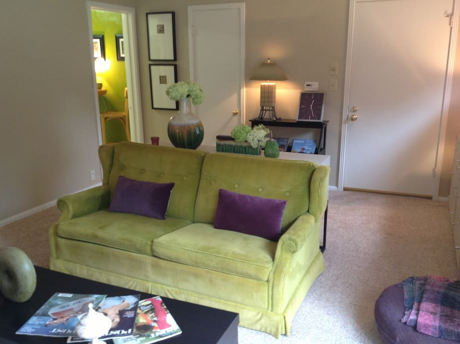 Living room - pull out sofa bed