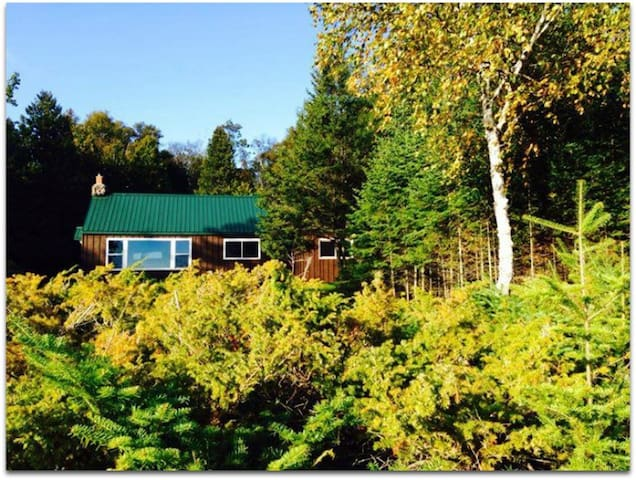 STONINGTON CLEARVIEW COTTAGE: Lake Michigan cottage!