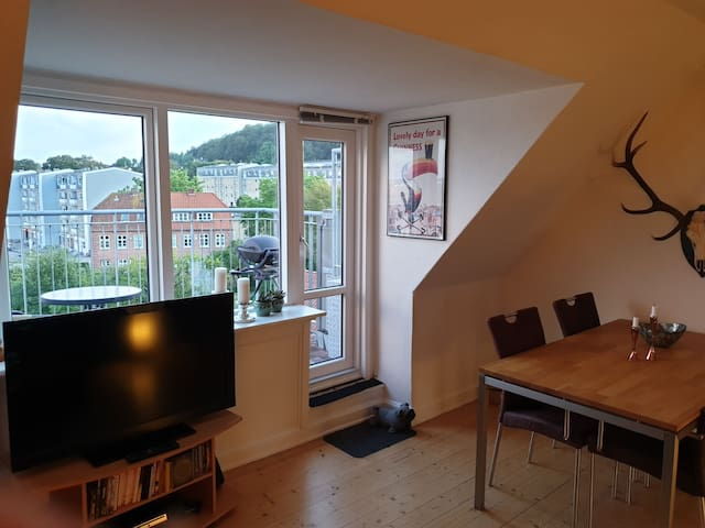 Lejlighed med altan og udsigt over hele Aalborg.