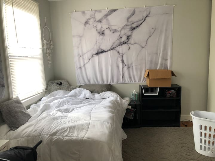 Single Bedroom in University City