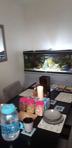 Aquarium Air b&b
