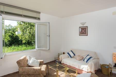 Villa Maslina-One-Bedroom Apartment with terrace - Čilipi - Apartmen