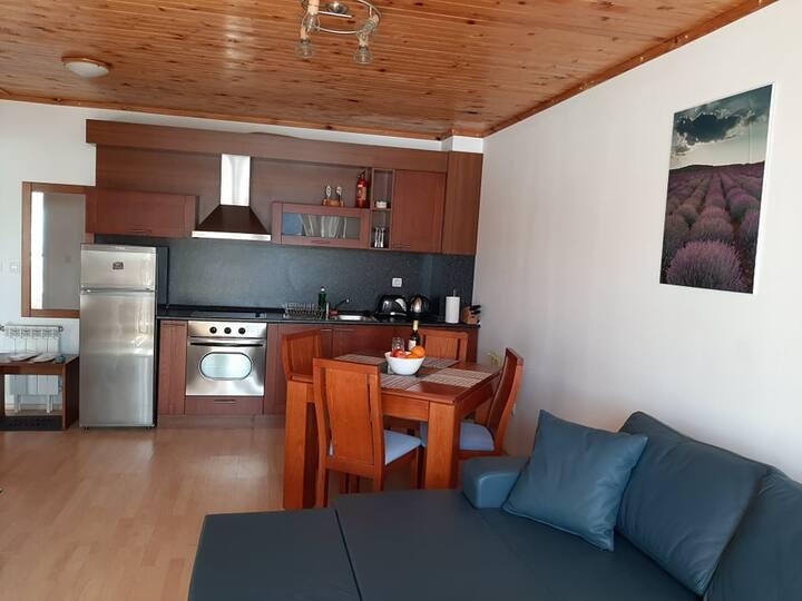 Светъл, толъл и уютен апартамент на Пампорово