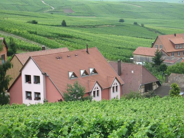 Gite Chez le Vigneron