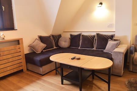 Mint apartment