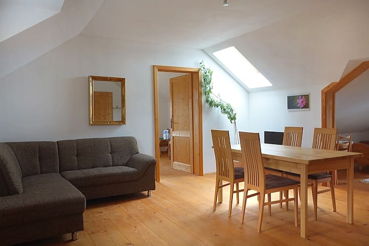 Spacious apartment under the roof for 4