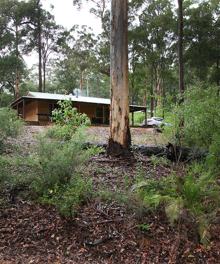 Karri Forest Retreat on the Warren River
