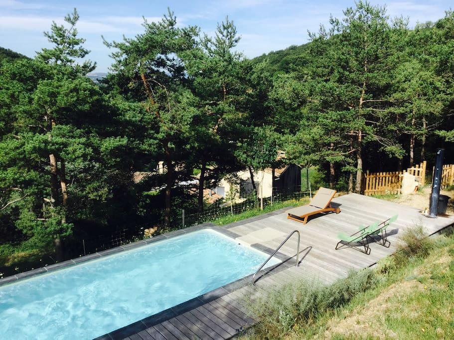 Une vaste piscine dans les bois à l'abri des regards