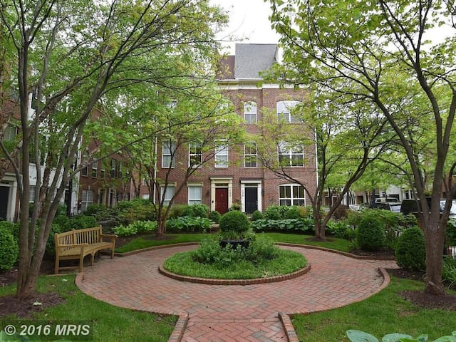 Luxury 4-level, 4-BR, 3.5-BA townhome - Washington - Townhouse