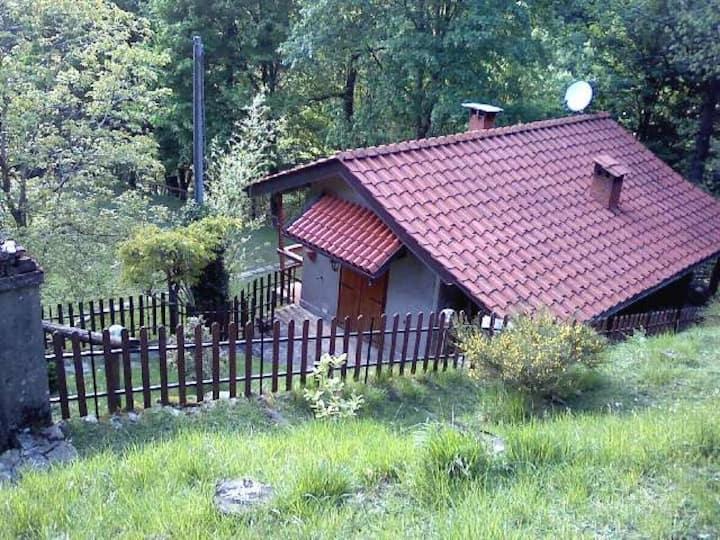 chalet nel bosco di Orsigna